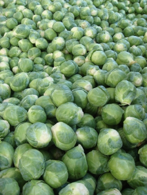 Brussel Sprouts - m