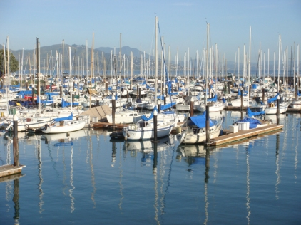Marina Reflections - m