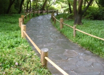 Path - rc3 - m