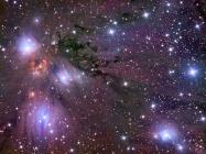 Star Forming Region NGC 2170