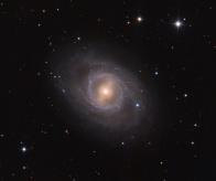 Supernova in M 95