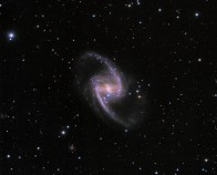 Supernova in the Great Barred Spiral Galaxy