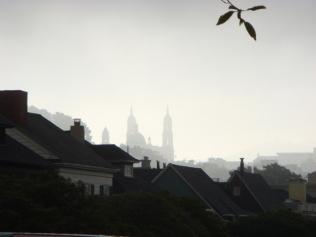 USF in the Fog - m