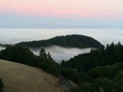 View from Mt Tam (2) 8-2-2014