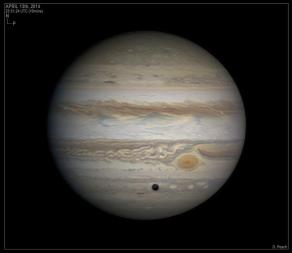 Jupiter on the evening of April 13, 2014 - photo by Damian Peach
